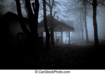 霧が深い森林