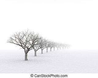 霧が深い, 冬ツリー, 霞, 憂うつである, 日