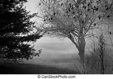 霧が深い, 寒い