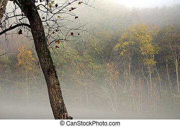 霧が深い, 秋