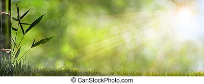 霧が深い, 自然, 抽象的, 背景, 群葉, 竹