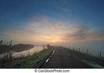 霧が深い, netherlands, 道, 朝