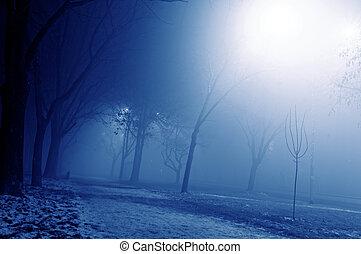 霧が濃い, 夜
