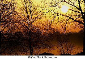 霧が濃い, 日の出