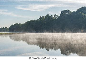 霧が濃い, 湖, 夏
