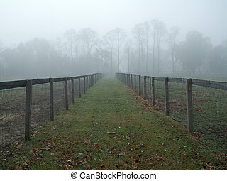 霧が濃い, 牧草地