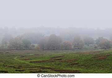 霧が濃い, 風景