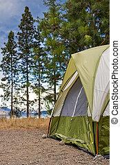 露營者, 帳篷, 建立, 在, 荒野
