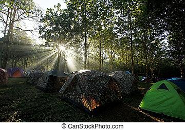 露营, 帐篷, 在, a, 营房站点