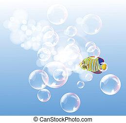 青い水, fish