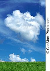 青い空, フィールド, 緑の白, 雲