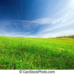 青い空, 曇り, 緑の丘, 下に