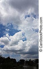 青い空, 白い雲, 新たに