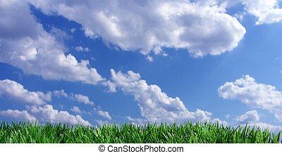 青い空, 緑の草