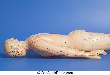青い背景, 医学, 人間, 刺鍼術, モデル