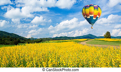 青い花, フィールド, 上に, 空, 黄色, 空気, 暑い, に対して, balloon