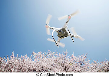 青い花, 無人機, 空, さくらんぼ