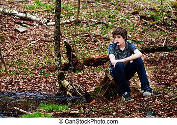 青少年男孩子, 坐, 在, a, 森林