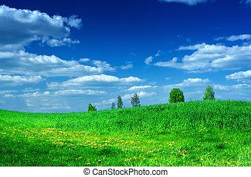 青緑, 空, 牧草地, 美しさ