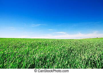 青緑, 草, 空, 下に
