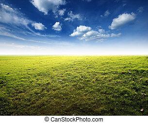 青緑, 草, 空