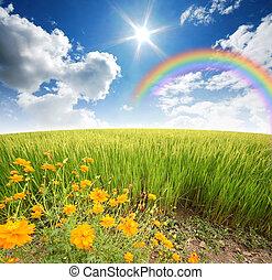 青緑, 草, 空, 花