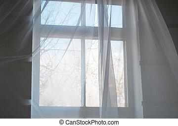 青, カーテン, 春, 空, 窓, 白, 透明