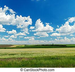 青, 上に, 空, それ, 曇り, フィールド, 緑