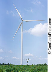 青, 夏, エネルギー, 空, 源, 回復可能, タービン, 風