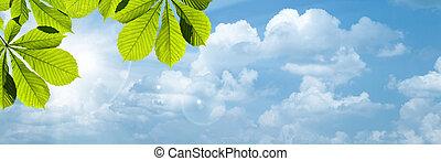 青, 太陽, 抽象的, 背景, 明るい空