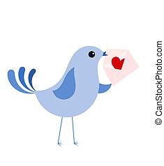 青, 愛鳥, 手紙