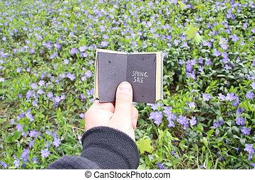 青, 春, セール, フィールド, テキスト, 花