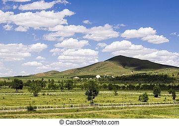 青, 曇った空, 牧草地, 木