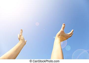青, 最後, 開いた, やし, 空, 2つの手, 上向きに