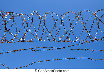 青, 有刺鉄線, 空, 背景