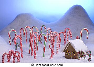 青, 杖, キャンデー, 日没, 森林, クリスマス