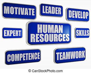 青, 概念, ビジネス, -, 人的資源