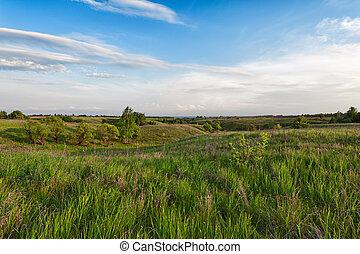 青, 牧草地, 空, 曇り, 丘陵性, 緑