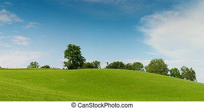 青, 牧草地, 空, 木, 緑の丘, 柔らかい