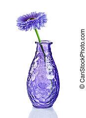 青, 白い花, 隔離された, つぼ