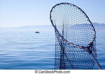 青, 網, 海, 釣り, 着陸