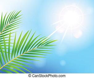 青, 美しさ, 日当たりが良い, 空, 木, やし