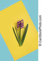 青, 美術の色, 黄色, バックグラウンド。, デザイン, 花, 最小である
