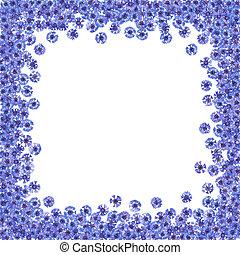 青, 隔離された, フレーム, 花,  cornflowers,  knapweed, 花が咲く, ボーダー