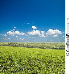 青, 雲, 空, 海原, フィールド, 緑, 下に