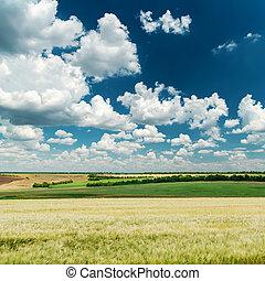 青, 雲, 空, 海原, 緑の風景