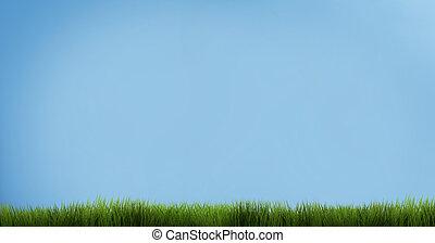 青, render, 空, grass., 緑の草, 3d