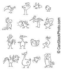 面白い, セット, 鳥
