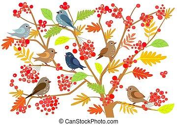 面白い, ブランチ, 木, 鳥, ナナカマド, 小さい, デザイン, あなたの