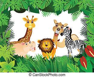 面白い, 動物, コレクション